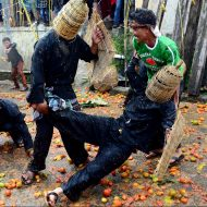 "Langit biru cerah menggelayut menghiasi di kawasan Lembang, Kabupaten Bandung Barat. Wajah garang di balik tameng siap bertempur. Buah tomat digenggaman tangan siap dilempar. Begitu para gadis memasuki arena yang membawa nampan selesai dengan pembukaannya, sontak ratusan buah tomat meluncur di udara menghujam dua kubu yang berseteru. Warga pun bersorak-sorai dan dari mereka yang terkena lemparan tomat kembali melemparkan tomat walau tidak menentu kemana arah tujuan. Perisai yang dipakai perang kini telah beraroma tomat busuk dan jalan pun berubah berubah memerah. Awalnya kedua kubu saling melempar dari jarak jauh, namun waktu demi waktu mereka saling mendekat. Sekitar dua ton tomat afkiran alias tomat yang mulai busuk dan tidak laku dijual itu langsung tandas dalam waktu hampir mencapai 30 menit saja. Perang tomat yang sering kita lihat di Spanyol inilah yang sangat ditunggu warga. Perang tomat ini menjadi ritual Hajat buruan yang diakhiri dengan Rempug Tarung Adu Tomat di Kampung Cikareumbi, Desa Cikidang, Kecamatan Lembang, Kabupaten Bandung Barat, Rabu, 19 Oktober 2016. ""Hajat buruan merupakan tradisi dari leluhur kita yang harus kita jaga dan lestarikan"" Ujar Abah Effendi, warga setempat. Seniman dan budayawan Mas Nanu Muda mengatakan, perang tomat menjadi bentuk pengembangan dari tradisi Hajat Buruan yang telah berjalan beberapa tahun kebelakang. Dan kini perang tomat menjadi ciri dari proses Hajat Buruan Cikidang. ""Dari perang tomat ini memliki makna yang bertujuan membuang dan melempari sifat busuk manusia"" tambahnya. Perang tomat pun usai, kini jalanan berubah menjadi lautan tomat. Warga yang awalnya saling serang kini bergotong-royong mengumpulkan sisa-sisa perang. Tomat sisa perang yang terkumpul nantinya dapat dimanfaat kembali sebagai pupuk kompos. PHOTO'S SPEAK/Achmad Nugraha"